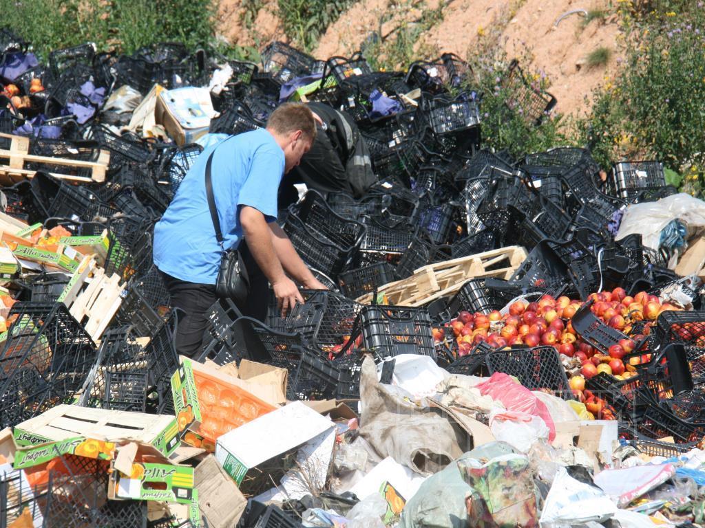 Партию икры стоимостью почти 500 тысяч долларов втоптали в грязь бульдозером в российском Хабаровске - Цензор.НЕТ 368