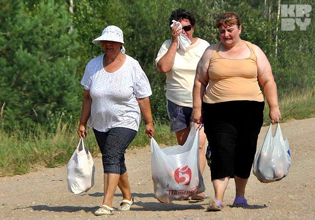 Пограничники изъяли две партии контрабандных сигарет на границе с Румынией и Беларусью, - погранслужба - Цензор.НЕТ 2042
