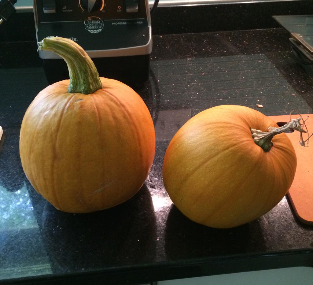 The pumpkin plant yielded two #solids #mathphoto15 http://t.co/2kq3smkcYy
