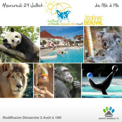 Découvrez des parcs animaliers tout l'été ! Demain à 18h, direction le zoo parc de Beauval. http://t.co/TZOk9e5nW5 http://t.co/9CuY2tYiDJ