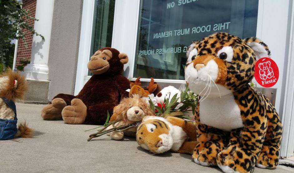 Today @ 5: Walter Palmer's dental office turns into makeshift memorial for #CecilTheLion http://t.co/85MM25HlGb http://t.co/g26jksjLDt