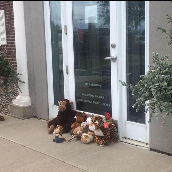 A small memorial for #Cecil the lion, outside the dental surgery of #WalterPalmer, the lion murderer.. http://t.co/9uL28YQ65Y