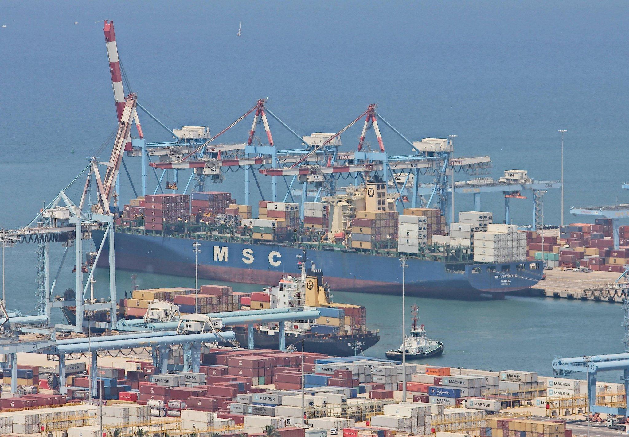 Volatile Shipping Market