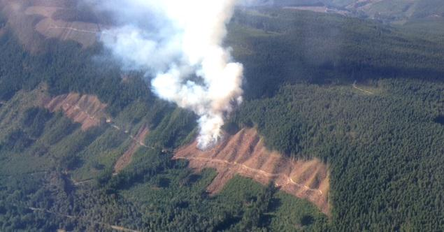 Crews are responding to a #BCwildfire near Skutz Falls Rd about 10 km east of #Cowichan Lake. http://t.co/nCw90BUlrP http://t.co/mHV4Uonges
