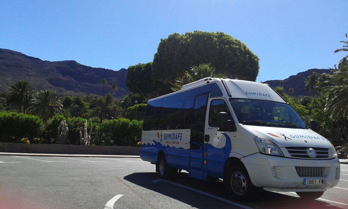 Otras redes de transporte urbano en Gran Canaria CLGZHS6WwAQITLV