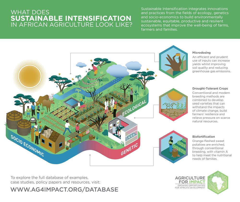 Sustainable Intensification: Radical measures and new paradigms for achieving food security… https://t.co/JH77WIQlvm http://t.co/mBPTpCrGgp