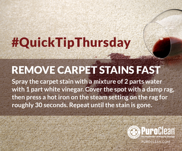 "PuroClean on Twitter: ""#QuickTipThursday: Easily remove carpet stains with white vinegar, water and a hot iron. #Carpet #Cleaning #Stain ..."