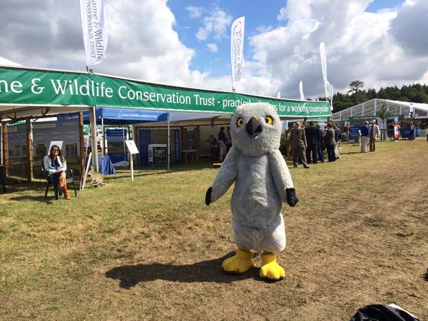 Nice to see @HenryHenHarrier at the GWCT stand. Coming in for lunch? No grouse on the menu I'm afraid. http://t.co/Nw7HZcExUX