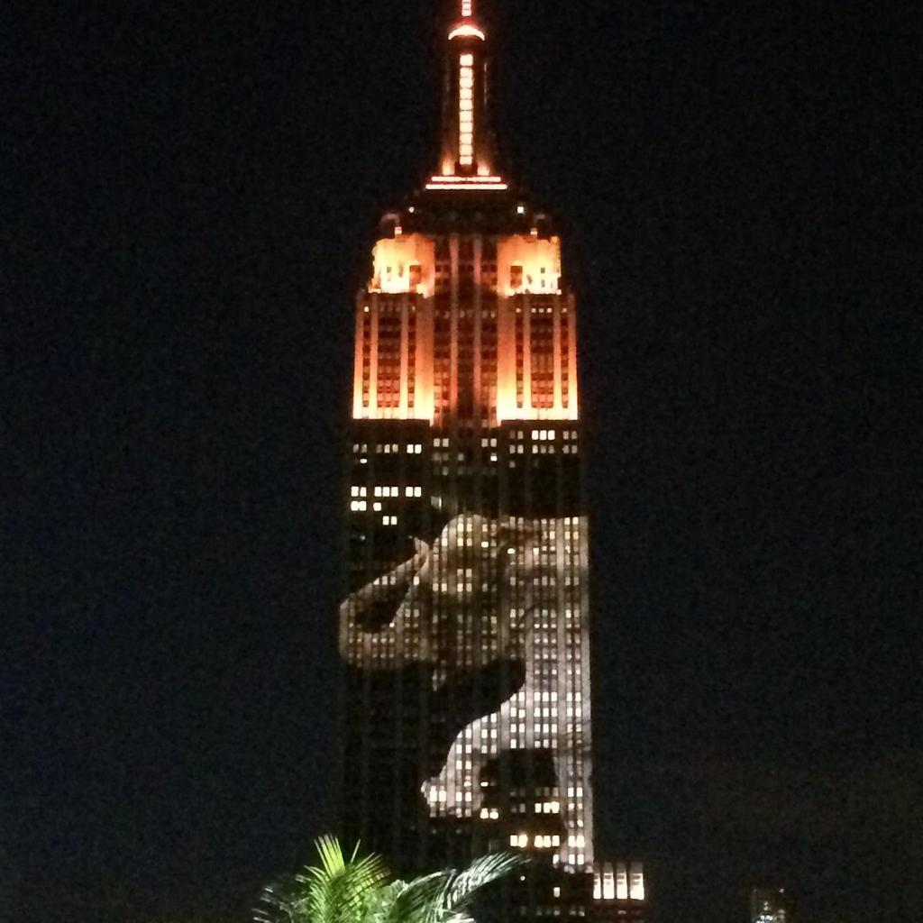 #96Elephantsdie every day. The  @EmpireStateBldg spreads awareness tonight that we are#RacingExtinction. http://t.co/r8f0gSQtHc