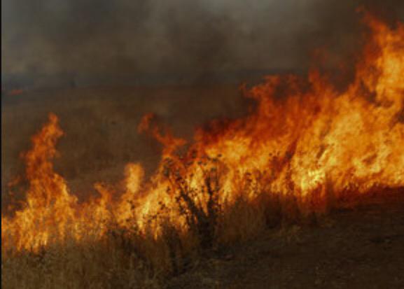 Erdőtűz miatt kellett evakuálni lakosokat Jeruzsálem mellett – már 3 ház ég