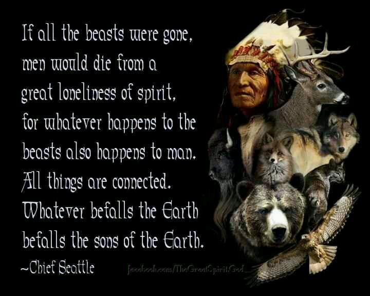 Jackiegerstein Ed D On Twitter Chief Seattle S Speech Of 1854 Is Even More Relevant Today Cecilthelion Environed Http T Co Vdkfssndpk