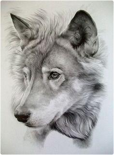 Graphite Pencil Draw On Twitter Amazing Draw Pencil Http T Co