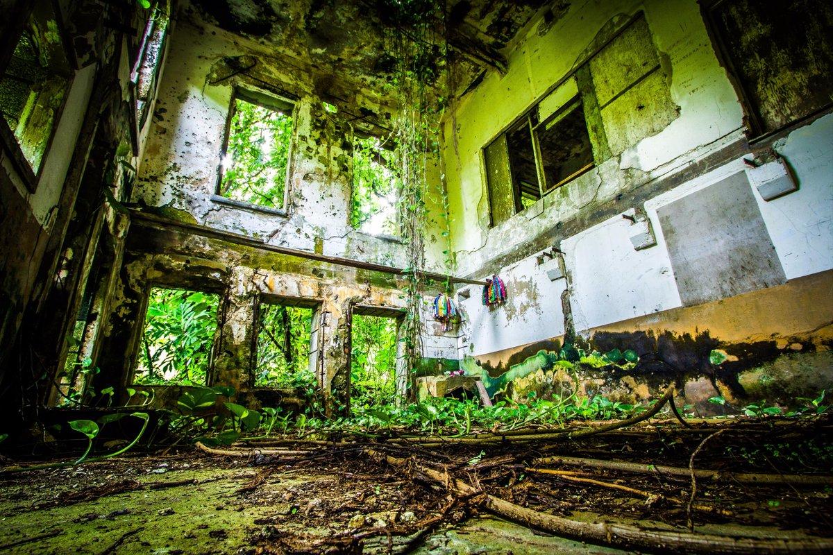 #HDDお蔵出し戦跡シリーズ ⑳ サイパン 日本通信局跡地 元は軍用では無く民間の建物(たぶん南洋興発?)を転用。 アールデコ調のデザインの館が戦後70年近く経過して木々に埋もれた風景はめっさ感動的やもです。