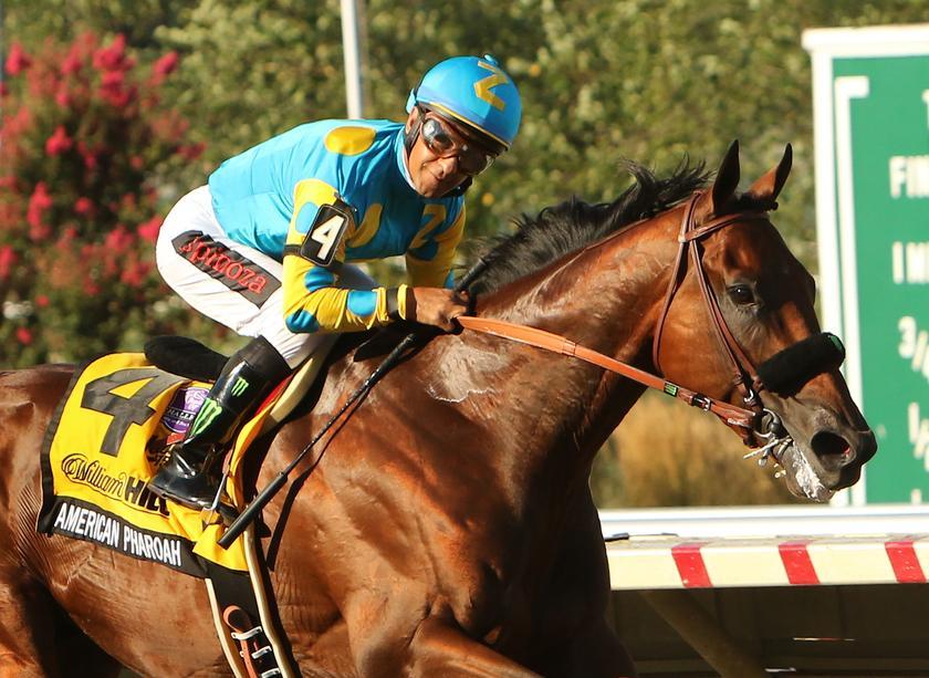 American Pharoah – Haskell Invitational Stakes 2015