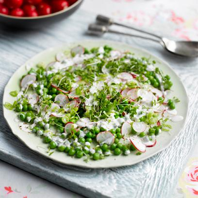 The secret superfood power of the humble radish http://t.co/so5iY93qIr http://t.co/R00BuhWmPh