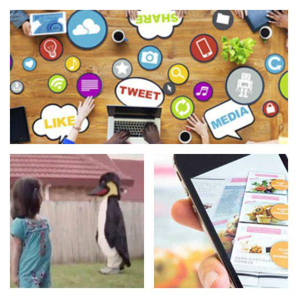 A bike-stealing penguin, @blippar and our top 50 #UKTweetElite, all on last night's #1805 http://t.co/3Gm0aF8zyB http://t.co/VbaDBztQFd