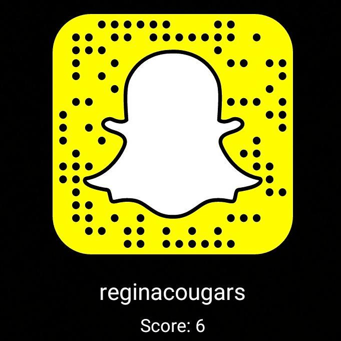 Delete snap cougar account