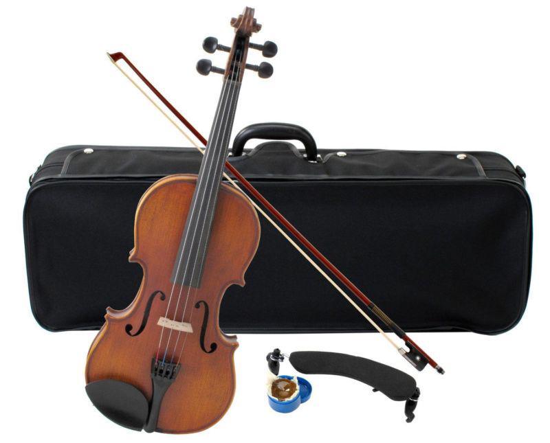Dimentica violino da 14mila euro su una panchina, non lo trova più