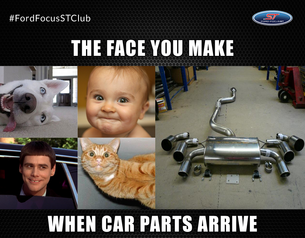 Ford Focus St On Twitter Are You Waiting For Some Car Parts