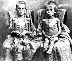 """Vaizdo rezultatas pagal užklausą """"holodomor genocide"""""""