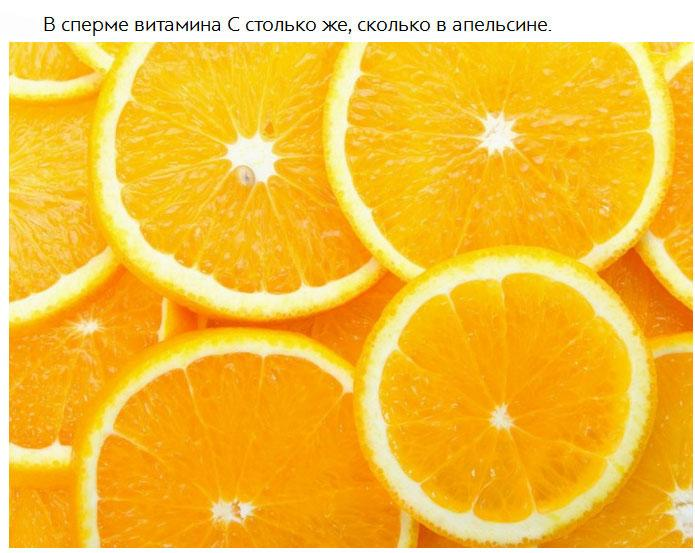 free electrokinetic chromatography: theory, instrumentation and