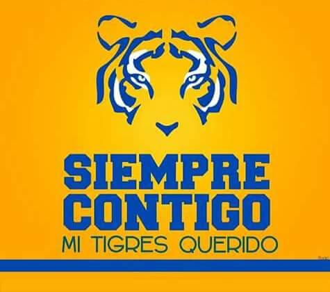 Una felicitación a nuestro equipo, hizo una gran Copa Libertadores, siempre orgulloso de ser Tigre. #GraciasTigres http://t.co/ijE6TfXQxA