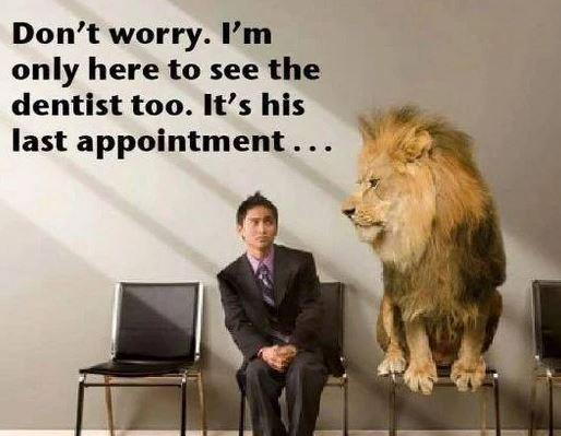 Suddenly the hunter has become the hunted! I wonder how he feels now? #lion #cecilthelion #dentist #hunter #hunted http://t.co/c66goOabTX