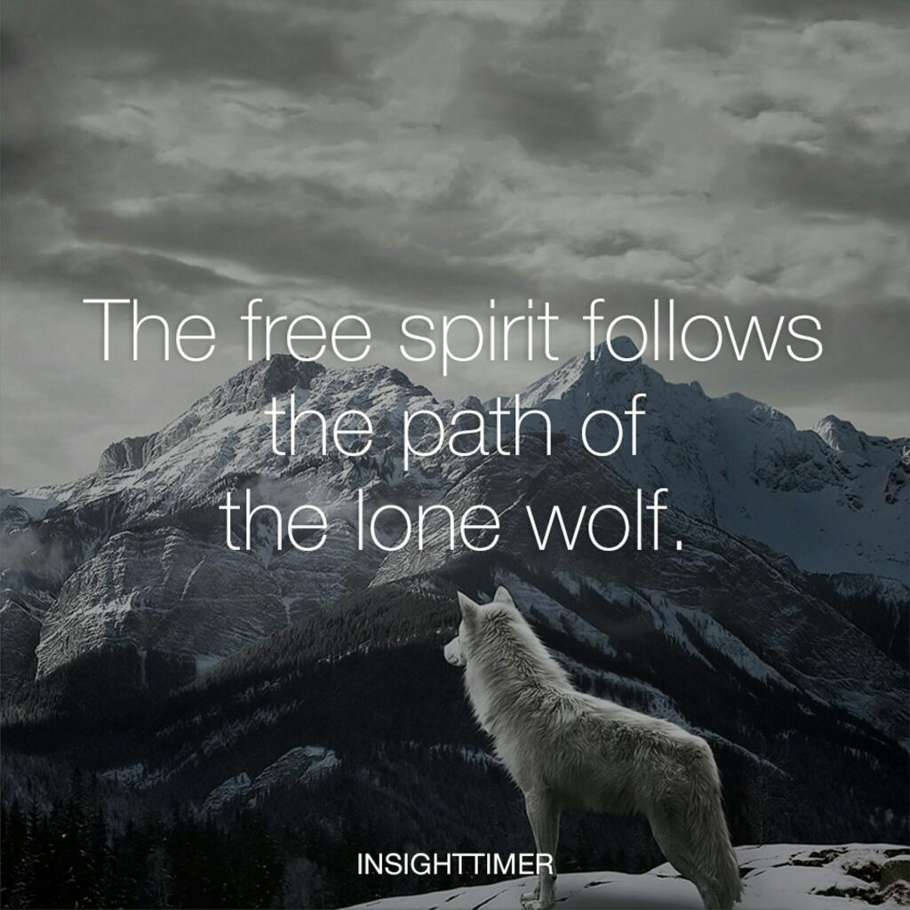 Insight Timer On Twitter The Free Spirit Follows The Path Of The