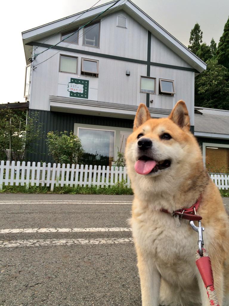 おみせとあたい pic.twitter.com/1dfCFeR02A