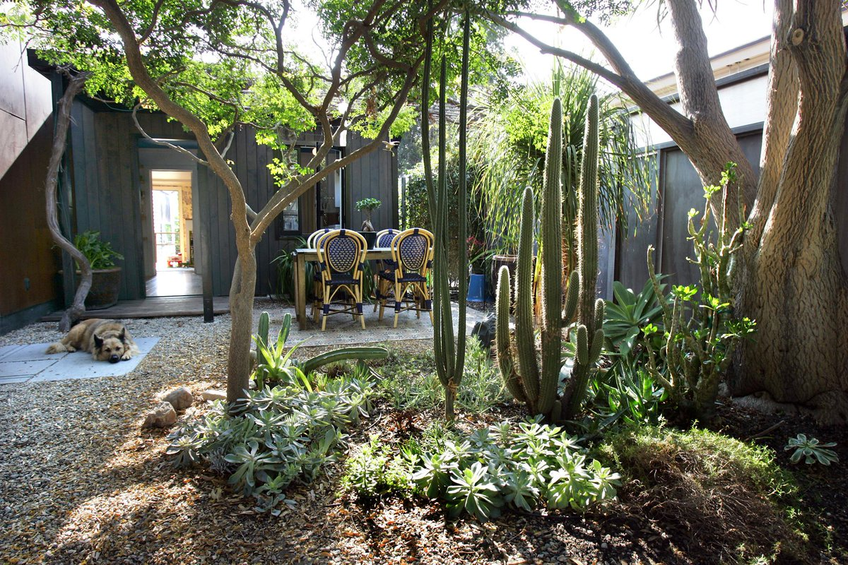 It's Dry Out There: 11 Inspiring Water-Wise Landscapes http://t.co/RJT80Lymvf #gardening  #CAdrought http://t.co/UmZldVt2Dn