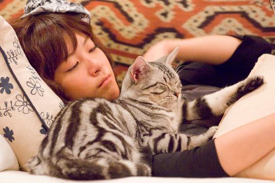 这张树里和猫在一起的照片真是好萌>.<妥妥地被治愈了呢 http://t.co/cEoF1SkcTN