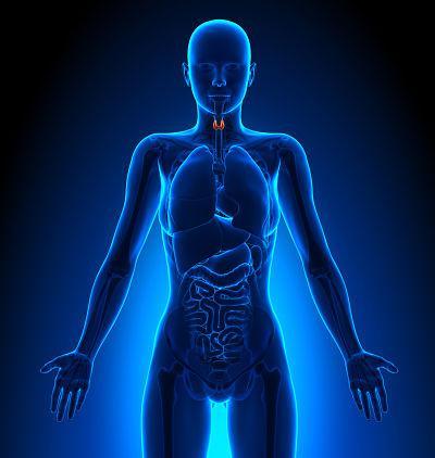 fit in biochemie das prüfungstraining für mediziner chemiker und biologen