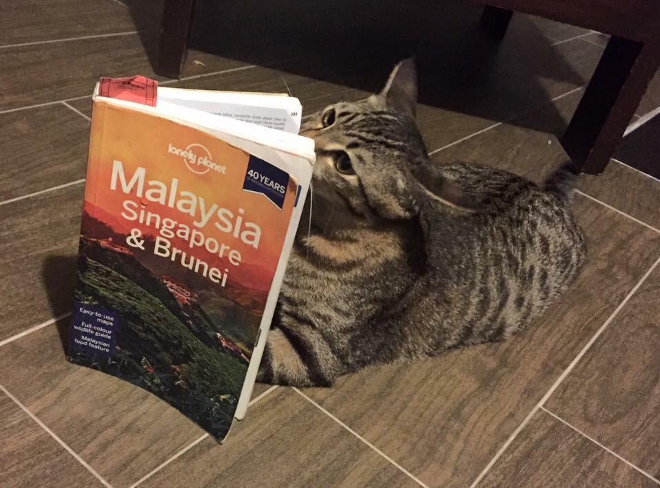 Stannis is well into his travel. @lonelyplanet http://t.co/mJ01cosZ78