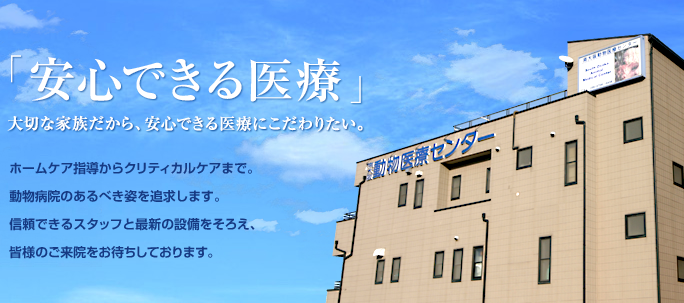 当院の公式ホームページはこちら。 ⇒ https://so-amc.com/ #動物病院 #大阪 #大阪市 #平野区 #八尾 #藤井寺 #堺 #松原 #羽曳野 #美原 #ペットpic.twitter.com/rSoLAPZPZ8
