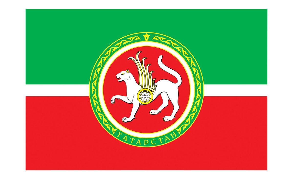 Герб и флаг татарстана на одной картинке