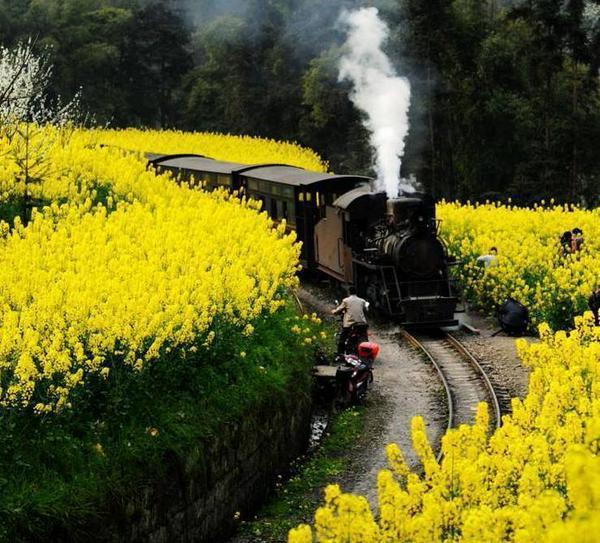 Tag monde sur Tout sur le rail CMIKF3CWIAAtL7y