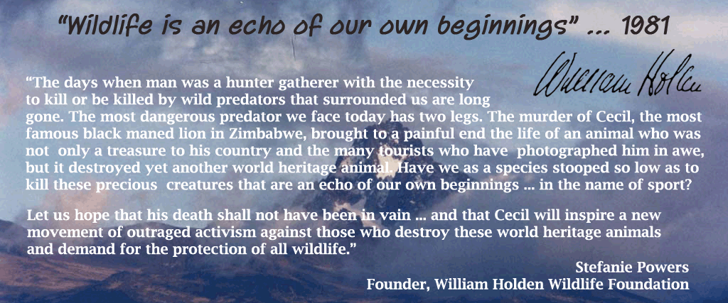Animal advocates, looking to support a worthwhile org--> William Holden Wildlife Foundation http://t.co/0PCT96Bf0L http://t.co/yiP5R9QIZ2