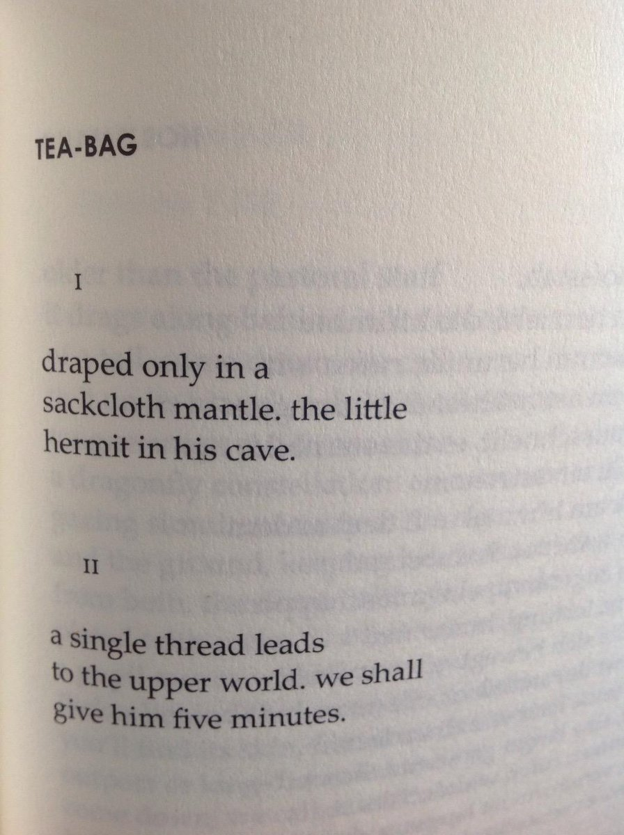 clare pollard on perfect poem for a tea break tea bag  clare pollard on perfect poem for a tea break tea bag by jan wagner trans by ian galbraith popescuprize t co v9ivltz8fb