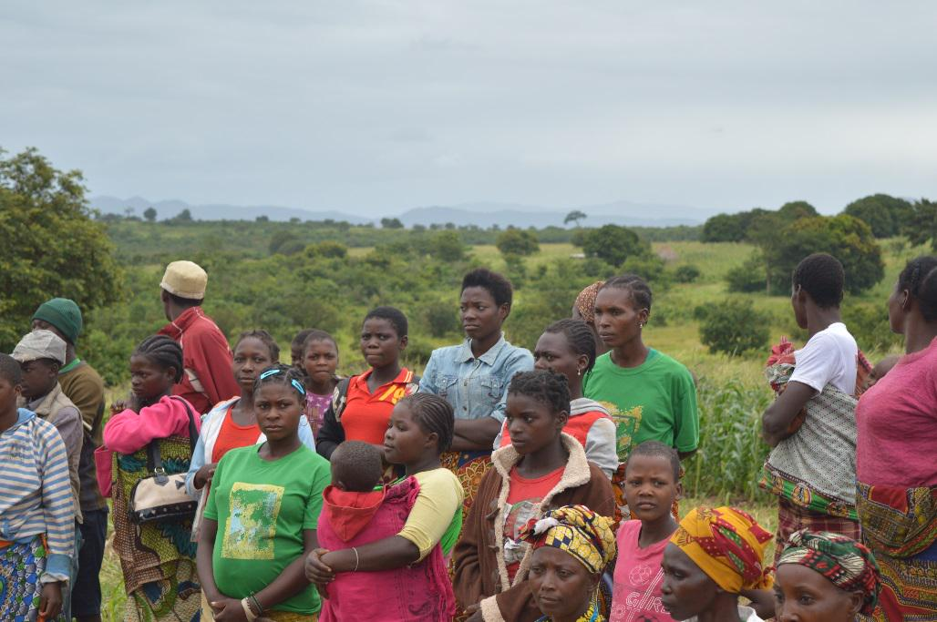 Young people in Agriculture: Aspirations and Value Chains http://t.co/f5T2KbFvu5 #YouthDay #YouthDay2015 http://t.co/e4FgexOQGp