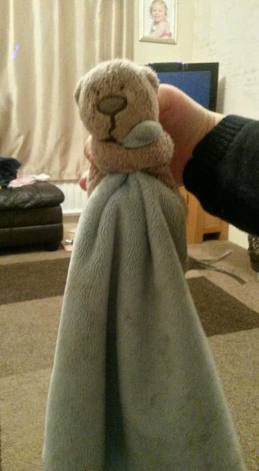 This little fella was found on Great Yarmouth seafront. See if we can get him home... http://t.co/8Y4k8OC3np