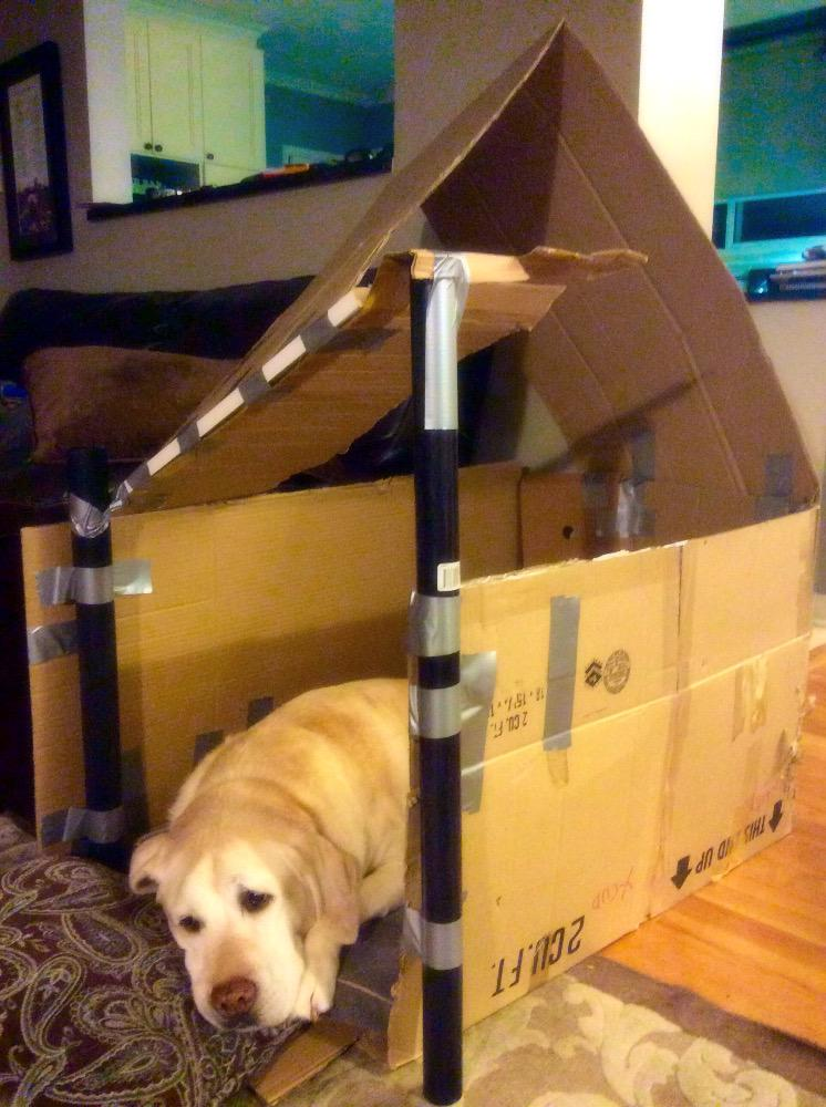 A dog resting in a cardboard dog house.