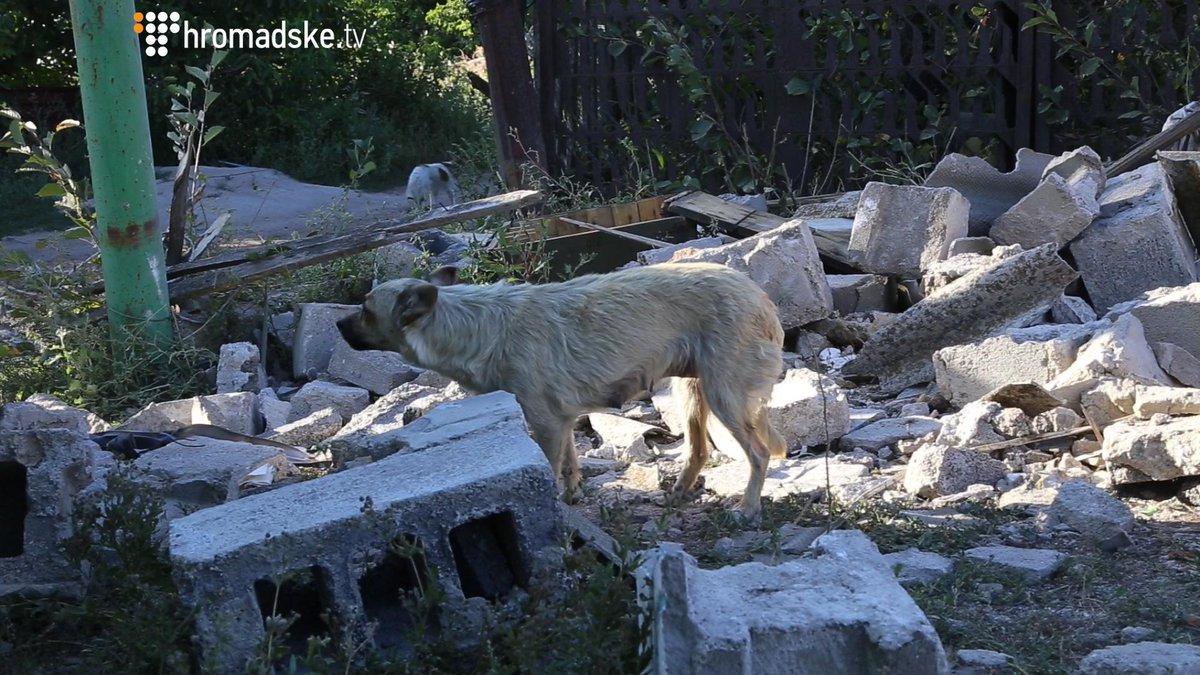 На Донбассе активность боевиков уменьшилась. Применяется, в основном, стрелковое оружие и гранатометы, - пресс-центр АТО - Цензор.НЕТ 1756