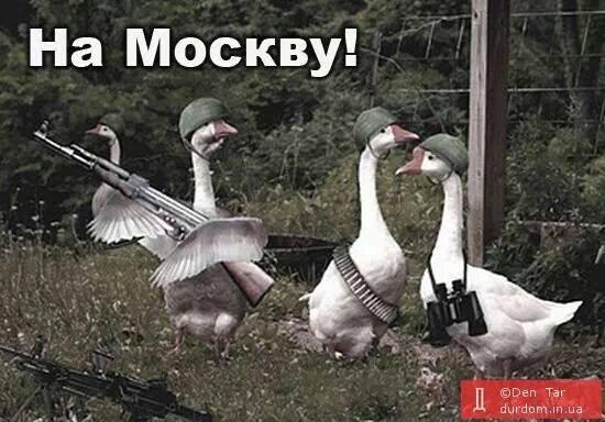 На Донбассе активность боевиков уменьшилась. Применяется, в основном, стрелковое оружие и гранатометы, - пресс-центр АТО - Цензор.НЕТ 8319