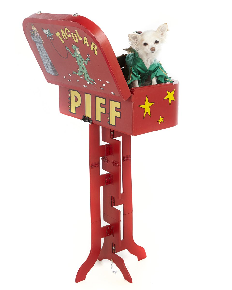 Mr. Piffles just hanging out in the trusty Tacular, no big deal. Retweet this post if you love @MrPiffles http://t.co/Kns44waiAD