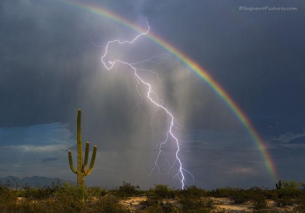 Steller: Tucson storm chaser's photo captures world's attention http://t.co/0pVNt7XBTm