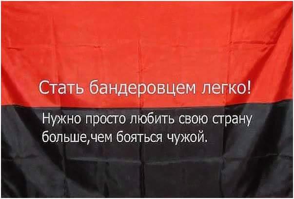 Янукович изначально готовил сценарий применения армии для подавления мирных протестов, - Бутусов - Цензор.НЕТ 4104