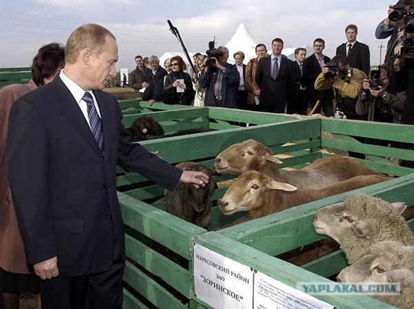 """В РФ уже хотят ввести уголовную ответственность за ввоз """"санкционных"""" продуктов - Цензор.НЕТ 52"""