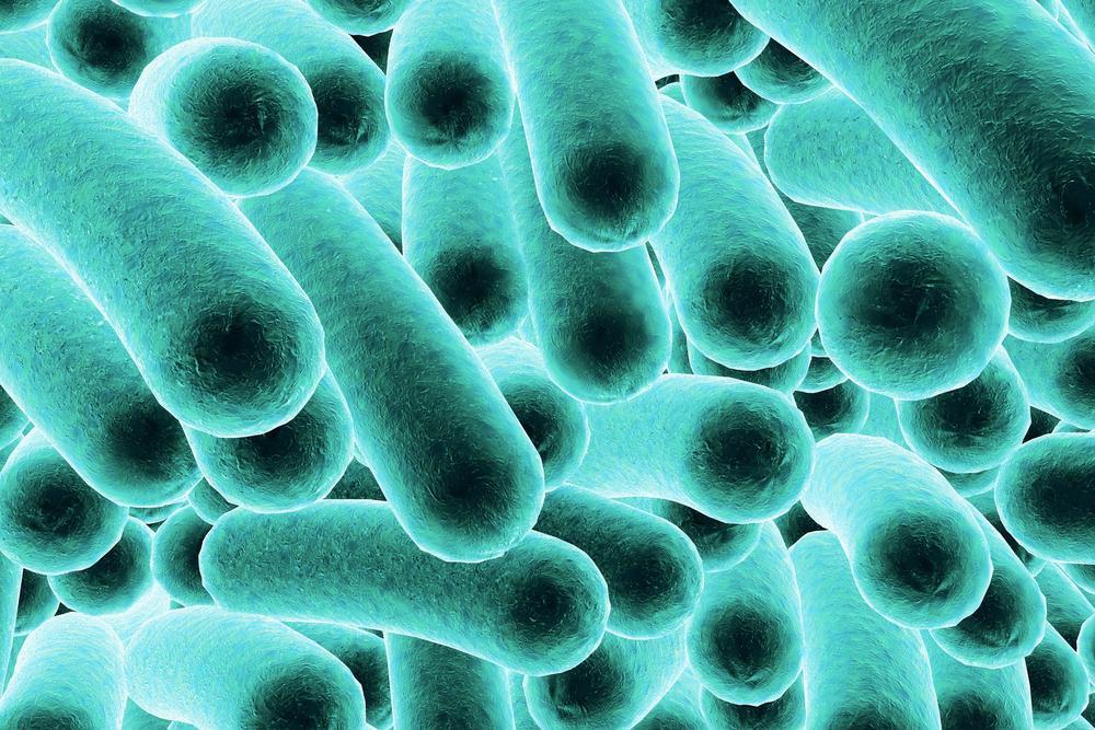 Allerta allimentare: Formaggi di pecora francese contaminati da Listeria Salmonella ed E. coli