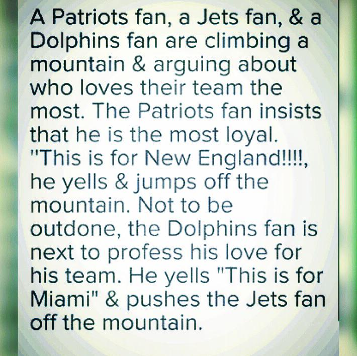 #Dolphins! http://t.co/zvu99mkn5o