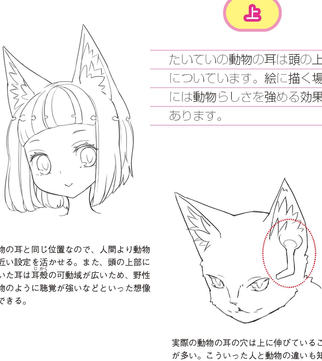 なんばさん At レミック編集 On Twitter 8月29日発売 ケモミミの